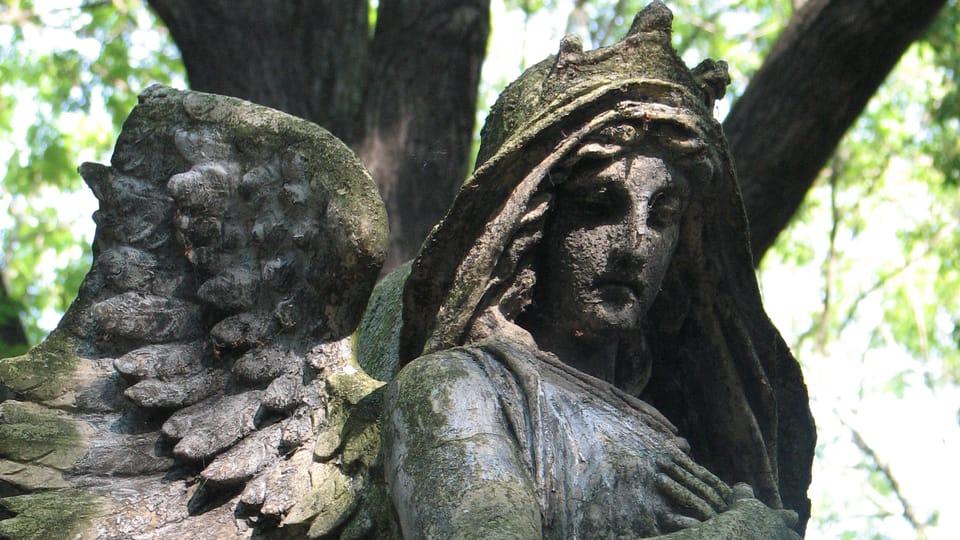 Olsany Cemetery,  photo: Štěpánka Budková