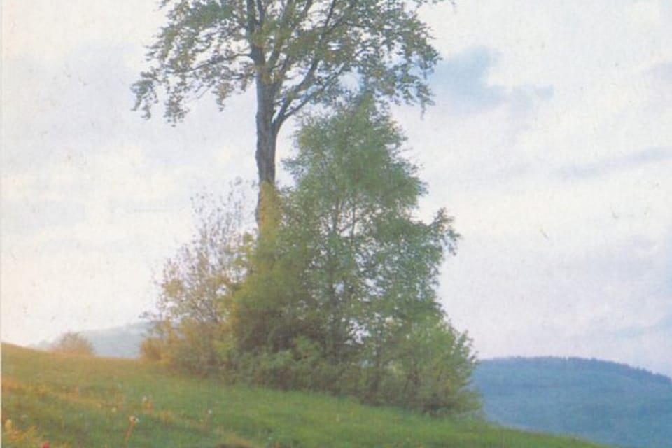 QSL card  (1992) | Photo: Czech Radio