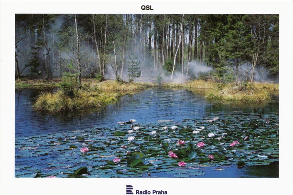 Rusalka's Lake at Vysoká near Příbram,  photo: CzechTourism