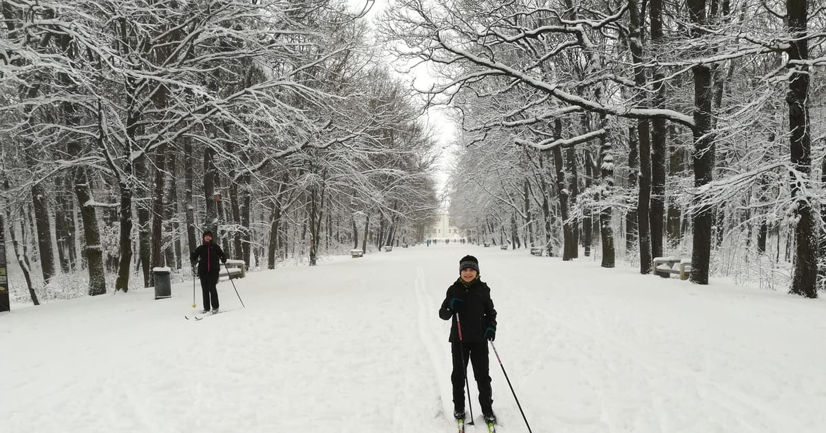 Demand for cross-country skis skyrockets as Czech winter centres remain closed